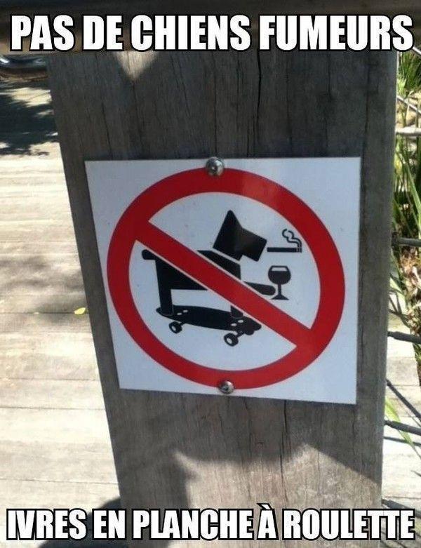 Pas de chien fumeur...