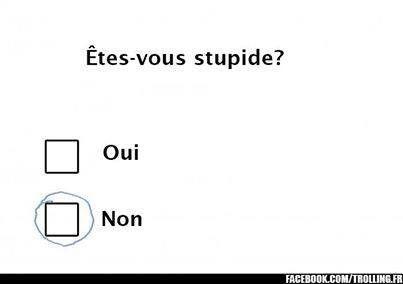 Êtes vous stupide ?