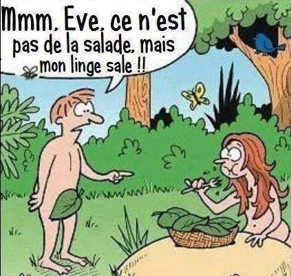 """Résultat de recherche d'images pour """"humour jardin"""""""