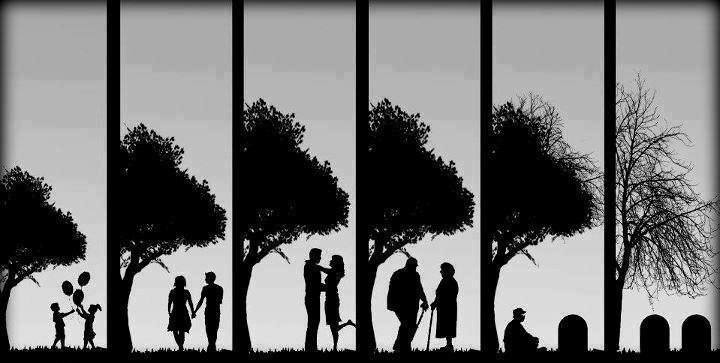 Une Vie Six Images Un Amour éternel